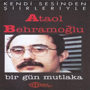 Ataol Behramoğlu 歌手頭像