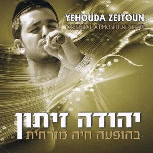 Yehuda Zeiton (יהודה זיתון) 歌手頭像