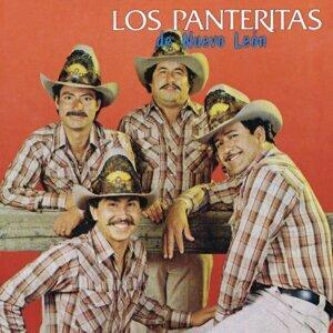 Las Panteritas de Nuevo León 歌手頭像