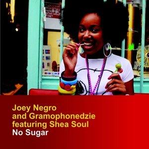 Joey Negro, Gramophonedzie 歌手頭像