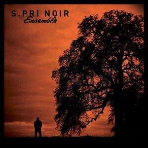 S.Pri Noir 歌手頭像