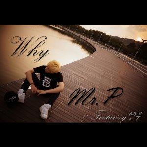 Mr.P 歌手頭像