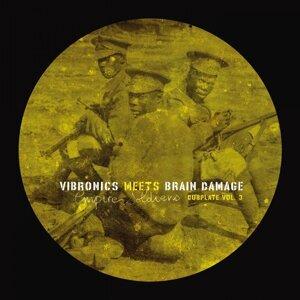 Vibronics, Brain Damage 歌手頭像