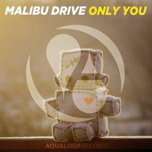 Malibu Drive 歌手頭像