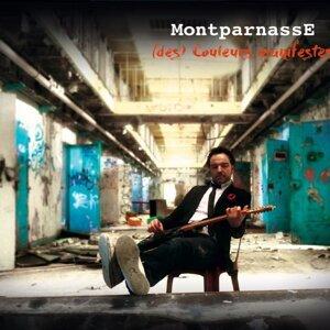 MontparnassE 歌手頭像