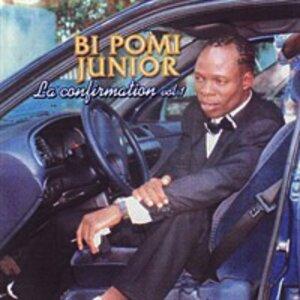 Bi Pomi Junior 歌手頭像