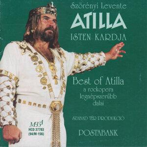 Vikidál Gyula 歌手頭像