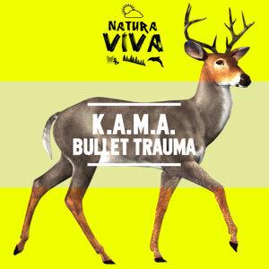 K.A.M.A.