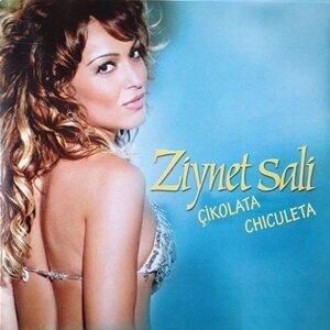 Ziynet Sali 歌手頭像