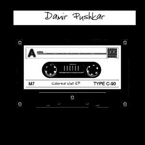 Damir Pushkar 歌手頭像