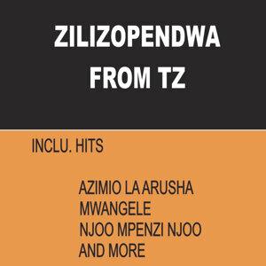 Zilizopendwa From Tz 歌手頭像