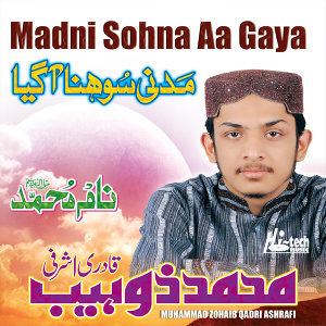 Muhammad Zohaib Qadri Ashrafi 歌手頭像