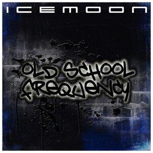 Icemoon 歌手頭像