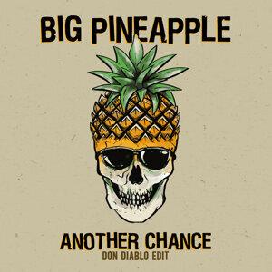 Big Pineapple Artist photo
