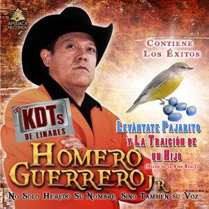 Homero Guerrero Jr y los Kdt's de Linares 歌手頭像