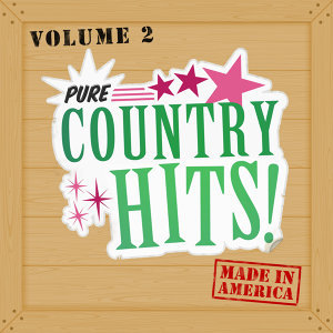 Pure Country Hits 歌手頭像