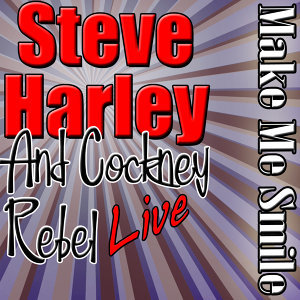 Steve Harley and Cockney Rebel 歌手頭像
