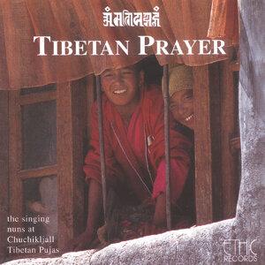 Tibetan Nuns 歌手頭像
