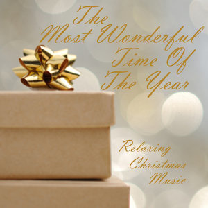 Relaxing Christmas Music Artist photo