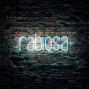 Rabiosa 歌手頭像