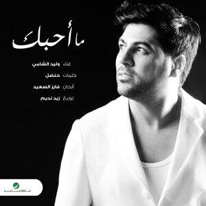 Waleed Alshami 歌手頭像