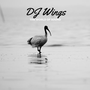 DJ Wings 歌手頭像