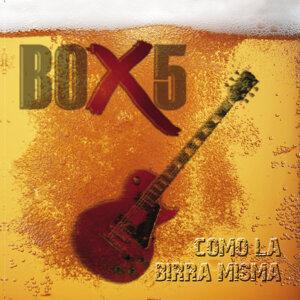 Box 5 歌手頭像