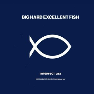 Big Hard Excellent Fish 歌手頭像