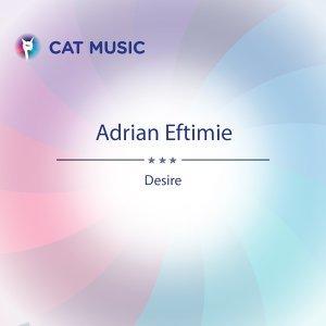 Adrian Eftimie