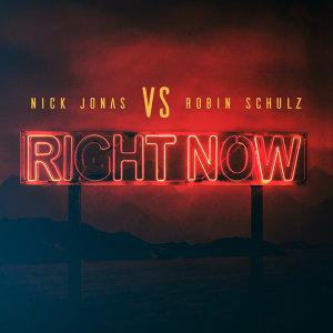Nick Jonas, Robin Schulz Artist photo