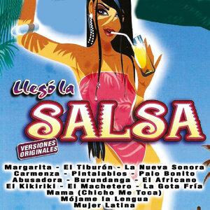 Banda Salsamania 歌手頭像