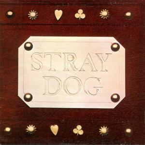 Stray Dog 歌手頭像