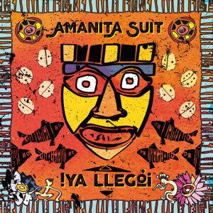Amanita Suit 歌手頭像