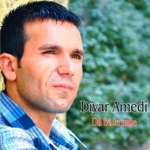 Diyar Amedi