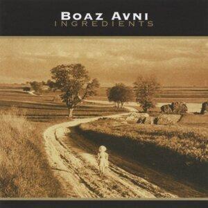 Boaz Avni 歌手頭像