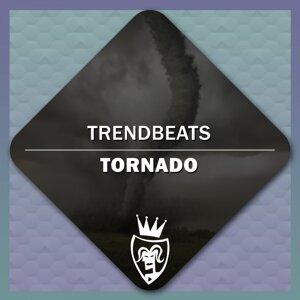 TrendBeats 歌手頭像