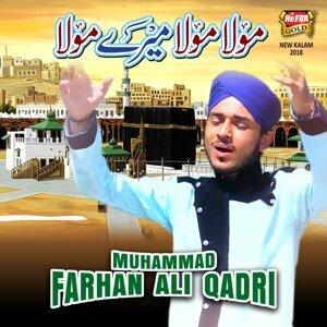 Muhammad Farhan Ali Qadri