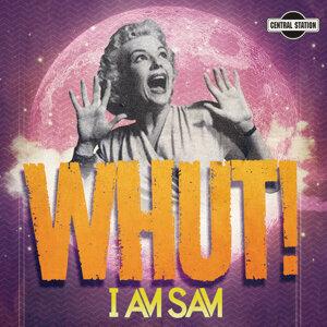I Am Sam 歌手頭像