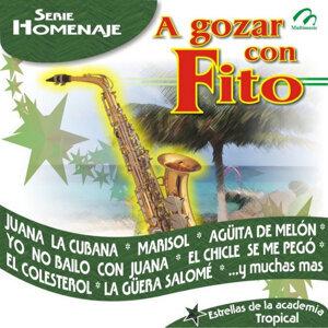 Fiesta tropical en navidad 歌手頭像