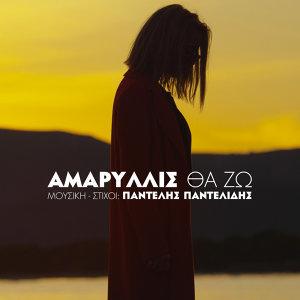 Amaryllis 歌手頭像