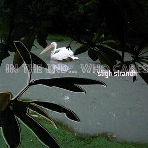 Stigh Strandh 歌手頭像