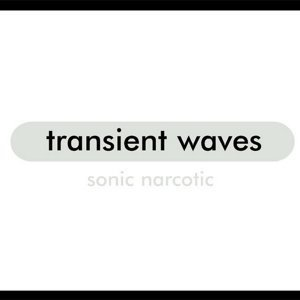 Transient Waves 歌手頭像