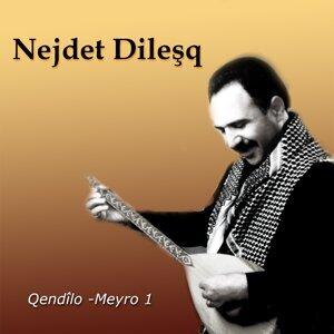 Nejdet Dileşq 歌手頭像