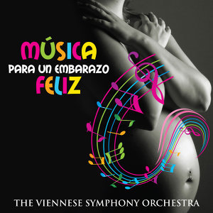 The Viennese Symphony Orchestra 歌手頭像