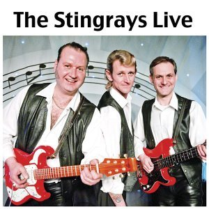 The Stingrays 歌手頭像