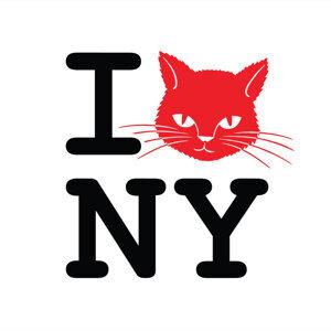 DJ Cat NYC 歌手頭像