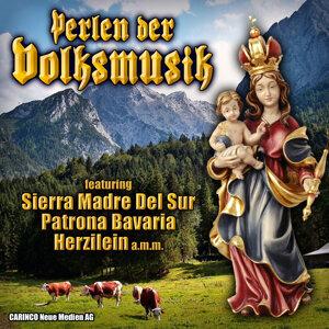 Die Lechtal Musikanten 歌手頭像