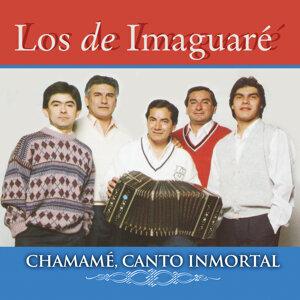 Los De Imaguare 歌手頭像