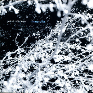 Jesse Stacken 歌手頭像