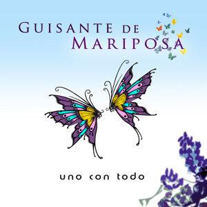 Guisante de Mariposa 歌手頭像